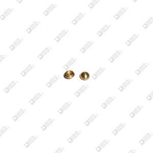 64559 BORCHIA D. 6,5X3,5 CON SEDE 4,7X1,3 OTTONE