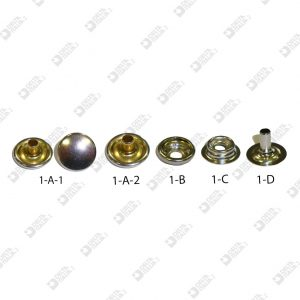 11642/1-A-1 BOTTONE KF 1 A-1 D 14 MM CALOTTATO OTTONE