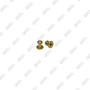 11652 POMOLO 8X 8 SF. 6 M 3 OTTONE
